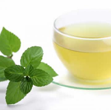 Mint Tea Leaf For Various Herbal Remedies